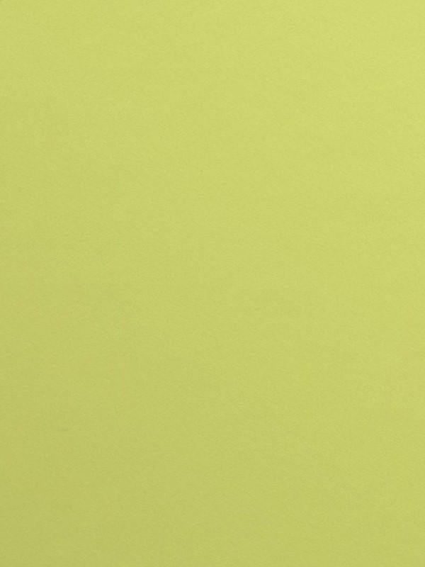 Forbo Furniture Linoleum spring green 4182 Möbel und Tischlinoleum Desktop