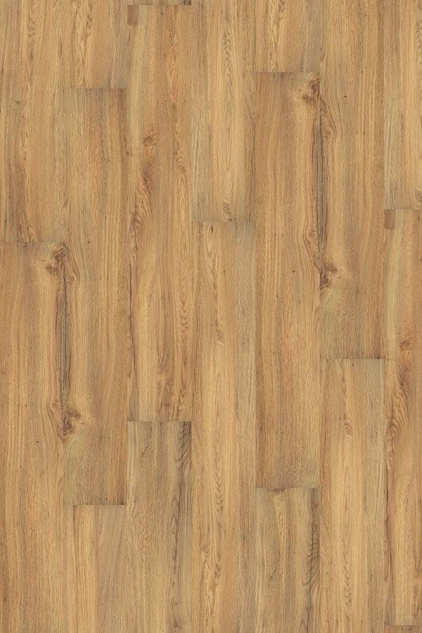Wineo 1000 Purline Bioboden Click Canyon Oak Wood Planken mit Klicksystem