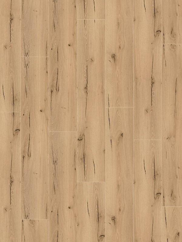 Wineo 1200 wood XL Click Purline Bioboden Announcing Fritz Rigid Designboden mit Klicksystem mit Microfase