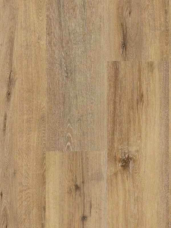 Wineo 400 Wood XL Click Vinyl Joy Oak Tender