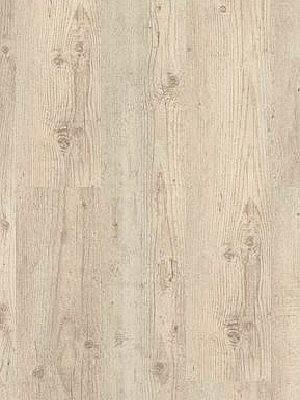 Wineo Purline Bioboden Denali Pine Wood Planken zur Verklebung oder Verlegung mit SilentPremium