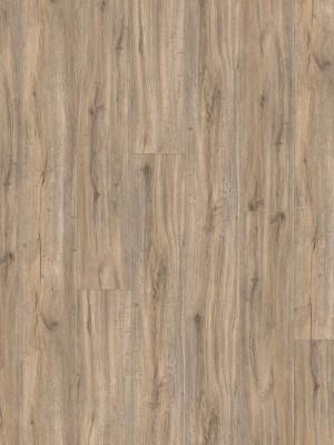 HARO DISANO ClassicAqua Rigid-Klick-Boden LA XL 4V Steineiche creme strukturiert SPC Rigid Designboden 9,3 x 2035 x 235 mm, mit integrierter Trittschalldämmung und authentischer 4V-Fuge, 1. Wahl Qualität sofort günstig kaufen *** Lieferung ab 15 m² bzw. 350 EUR Warenwert ***, HstNr.: 535699