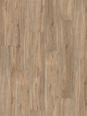 HARO DISANO Project Rigid-Boden LA 4VM Steineiche creme str. Elastotec Designboden 2 x 1300 x 248 mm, Profi-Bodenbelag besonders für Renovierung und Fußbodenheizing, sofort günstig direkt kaufen, 1. Wahl Qualität *** Lieferung ab 20 m² bzw. 350 EUR Warenwert ***, HstNr.: 537298