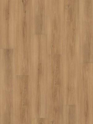 HARO DISANO Project Rigid-Boden LA 4VM Feldeiche strukturiert Elastotec Designboden 2 x 1300 x 248 mm, Profi-Bodenbelag besonders für Renovierung und Fußbodenheizing, sofort günstig direkt kaufen, 1. Wahl Qualität *** Lieferung ab 20 m² bzw. 350 EUR Warenwert ***, HstNr.: 537300