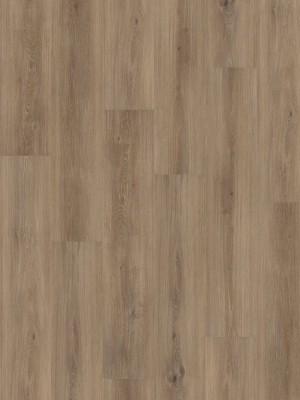 HARO DISANO Project Rigid-Boden LA 4VM Tabakeiche strukturiert Elastotec Designboden 2 x 1300 x 248 mm, Profi-Bodenbelag besonders für Renovierung und Fußbodenheizing, sofort günstig direkt kaufen, 1. Wahl Qualität *** Lieferung ab 20 m² bzw. 350 EUR Warenwert ***, HstNr.: 537302