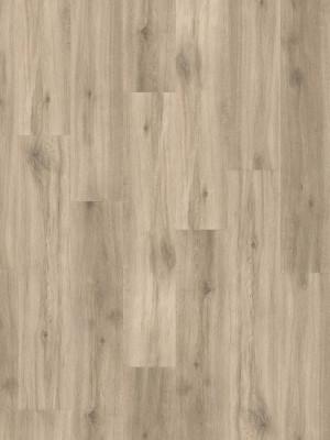 HARO DISANO Project Rigid-Boden LA 4VM Eiche Provence creme auth. Elastotec Designboden 2 x 1300 x 248 mm, Profi-Bodenbelag besonders für Renovierung und Fußbodenheizing, sofort günstig direkt kaufen, 1. Wahl Qualität *** Lieferung ab 20 m² bzw. 350 EUR Warenwert ***, HstNr.: 540073