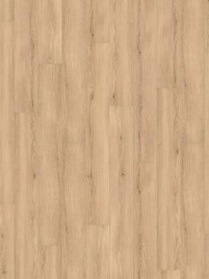 HARO DISANO LifeAqua Rigid-Klick-Boden LA XL 4V Eiche Lavida strukturiert SPC Rigid Designboden 8 x 1800 x 235 mm, mit integrierter Trittschalldämmung und authentischer 4V-Fuge, 1.Wahl Qualität *** Lieferung ab 15 m² bzw. 350 EUR Warenwert ***, HstNr.: 540373