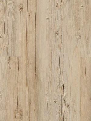 JAB Adramaq Click Vinyl-Designboden mit Klicksystem Maulbeerbaum beige Planke 180,8 x 1210,0 mm, 5 mm Stärke, 2,18 m² pro Paket, Nutzschicht 0,55 mm Klick-Vinyl-Design-Belag Preis günstig online kaufen und selbst verlegen von Bodenbelag-Hersteller JAB Adramaq HstNr: aCL41111 *** Lieferung ab 15 m² ***