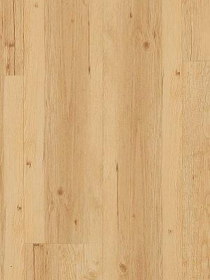 JAB Adramaq Click Vinyl-Designboden mit Klicksystem Tanne antikweiß Planke 222,3 x 1212,9 mm, 5 mm Stärke, 2,16 m² pro Paket, Nutzschicht 0,55 mm Klick-Vinyl-Design-Belag Preis günstig online kaufen und selbst verlegen von Bodenbelag-Hersteller JAB Adramaq HstNr: aCL1801 *** Lieferung ab 15 m² ***
