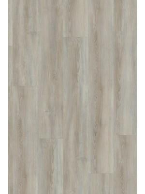 Adramaq Three Klebe-Vinyl Designboden moderne pinie 2,5 mm Landhausdiele  1219,2 x 177,8 x 2,5 mm zur Veklebung oder mit Verlegenterlage SilentPremium HstNr.: 10020218, günstig online kaufen, HstNr.: A-99990