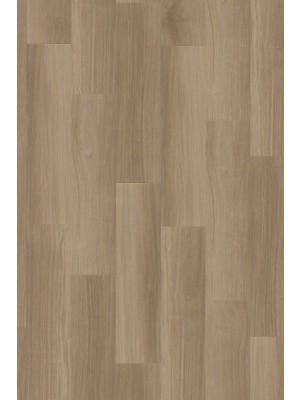 Adramaq Rigid Click+ Designboden Three blüteneiche natur 5,5 mm Landhausdiele  600 x 150 x 5,5 mm günstig online kaufen, HstNr.: A-RCL99993