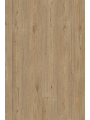 Adramaq Two Klick-Vinyl Designboden eiche prestige 5 mm Landhausdiele  1212,9 x 222,3 x 5 mm sofort günstig direkt kaufen, HstNr.: A-CL89986 *** Lieferung ab 15 m² ***