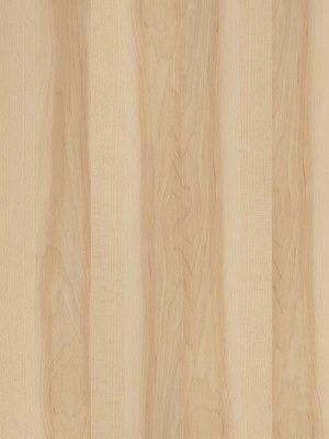 JAB Adramaq Kollektion 1 Vinyl-Designboden, Pappel, Planken 914,4 x 100 mm, Stärke 2,5 mm, 3,34 m² pro Paket - Nutzschicht 0,7 mm, Verlegung mit Verklebung oder Verlegeunterlage Silent-Premium HstNr.: 10020218, günstig kaufen von Bodenbelag-Hersteller JAB Adramaq HstNr: 1006 *** Lieferung ab 15 m² ***