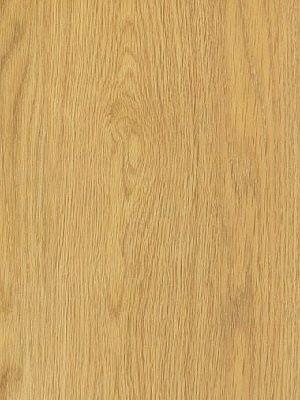 Amtico Access Vinyl Designboden Pale Ash Wood selbstliegend, Kanten gefast
