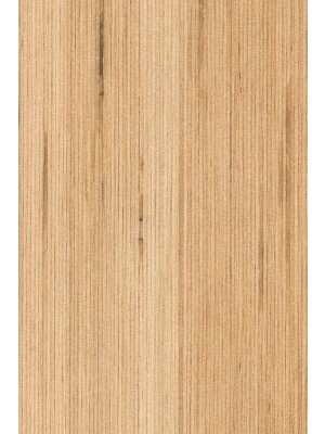 Amtico Cirro Designboden Rigid-Core PVC-frei Fused Birch 1219,2 x 184 mm