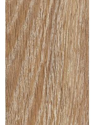 Amtico Cirro Rigid-Core Designboden PVC-frei Wood Standard Salted Oak Planke 1219,2 x 184 mm, 2,5 mm Stärke, 4,256 m² pro Paket, Nutzschicht 0,55 mm Rigid-Core, Verlegung mit Verklebung oder Verlegeunterlage Silent-Premium HstNr.: 10020218, von Bodenbelag-Hersteller Amtico HstNr: DR5W8210 *** Lieferung ab 15m² ***