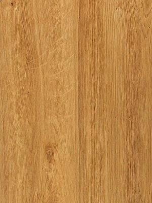 Amtico First Vinyl-Designboden Wood Designboden, Kanten gefast English Oak Planke 152 x 914 mm, Stärke 2 mm, 2,5 m² pro Paket, Verlegung mit Verklebung oder Verlegeunterlage Silent-Premium HstNr.:10020218, Preis günstig online kaufen von Bodenbelag-Hersteller Amtico HstNr: SF3W2498 *** Lieferung ab 15m² ***
