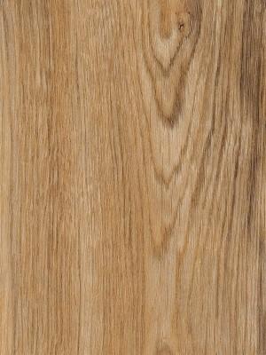 Amtico First Vinyl Designboden Featured Oak Wood Designboden, Kanten gefast