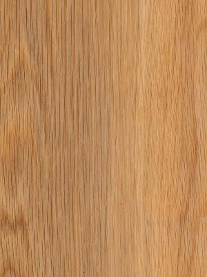 Amtico First Vinyl-Designboden Wood Designboden, Kanten gefast Honey Oak Planke 184 x 1219 mm, Stärke 2 mm, 2,0 m² pro Paket, Verlegung mit Verklebung oder Verlegeunterlage Silent-Premium HstNr.: 10020218, Preis günstig online kaufen von Bodenbelag-Hersteller Amtico HstNr: SF3W2504