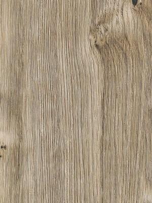 Amtico First Vinyl Designboden Sun Bleached Oak Wood Designboden, Kanten gefast