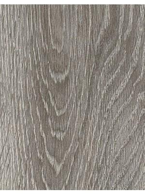 Amtico Form Vinyl Designboden Valley Oak Wood zur Verklebung