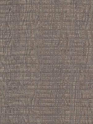 Amtico Signature Vinyl Designboden Cirrus Dawn Wood Standard