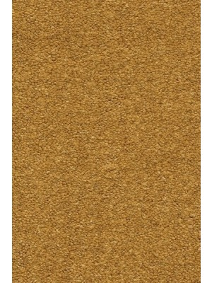 AW Carpet Velvet Oréade Teppichboden 54 Luxus Velours samtig-weich 400/500cm NK: 23/31 günstig Teppich-Bodenbelag online kaufen, HstNr.: 5414956441926