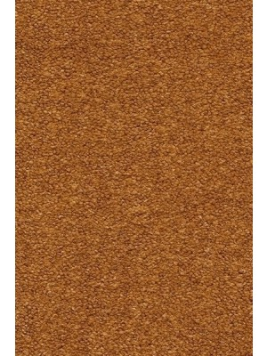 AW Carpet Velvet Oréade Teppichboden 80 Luxus Velours samtig-weich 400/500cm NK: 23/31 günstig Teppich-Bodenbelag online kaufen, HstNr.: 5414956442015