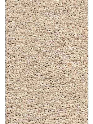 AW Carpet Vivendi Punch Teppichboden 33 Luxus Frisé besonders pflegeleicht 400/500cm NK: 23/31 günstig Teppich-Bodenbelag online kaufen, HstNr.: 5414956442879