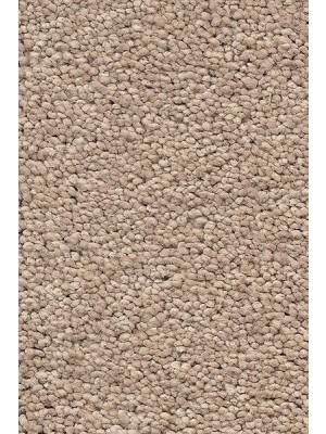 AW Carpet Vivendi Punch Teppichboden 34 Luxus Frisé besonders pflegeleicht 400/500cm NK: 23/31 günstig Teppich-Bodenbelag online kaufen, HstNr.: 5414956443524