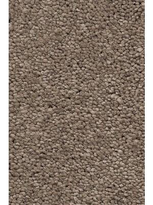 AW Carpet Vivendi Punch Teppichboden 37 Luxus Frisé besonders pflegeleicht 400/500cm NK: 23/31 günstig Teppich-Bodenbelag online kaufen, HstNr.: 5414956443548