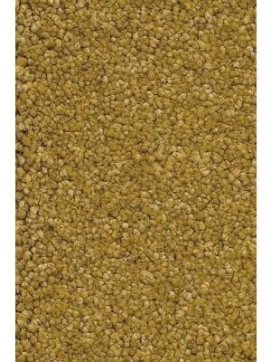 AW Carpet Vivendi Punch Teppichboden 54 Luxus Frisé besonders pflegeleicht 400/500cm NK: 23/31 günstig Teppich-Bodenbelag online kaufen, HstNr.: 5414956443609