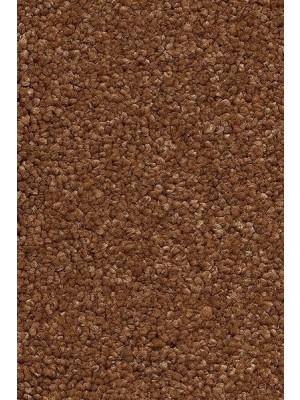 AW Carpet Vivendi Punch Teppichboden 80 Luxus Frisé besonders pflegeleicht 400/500cm NK: 23/31 günstig Teppich-Bodenbelag online kaufen, HstNr.: 5414956443661