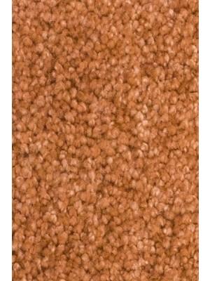 AW Carpet Vivendi Vigour Teppichboden 80 Luxus Frisé besonders pflegeleicht 400/500cm NK: 32 günstig Teppich-Bodenbelag online kaufen, HstNr.: 5414956422857