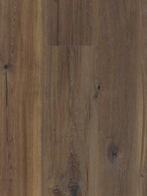 BerryAlloc Style 55 DreamClick Cracked Dark Brown Klick-Designboden 1333 x 204 x 5 mm, 2,164 m² pro Pack / 8 Stück sofort günstig direkt kaufen, HstNr.: 60001367 *** ACHTUNG: Versand ab Bestellmenge von 12 m2 ***