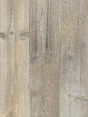 BerryAlloc Style DreamClick 55  Rustic Light Klick-Designboden 1337 x 204 x 5 mm, 2,164 m² pro Pack / 8 Stück günstig online kaufen, HstNr.: 60001574