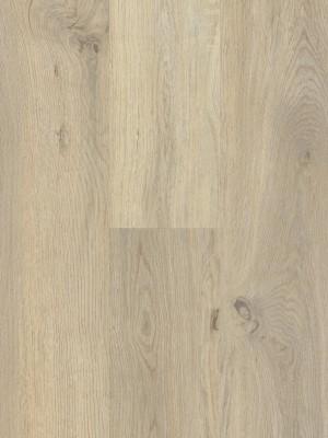 BerryAlloc Style DreamClick 55  Vivid Natural Klick-Designboden 1328 x 204 x 5 mm, 2,164 m² pro Pack / 8 Stück günstig online kaufen, HstNr.: 60001570