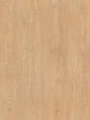 Cortex Aquanatura Clic Vinyl-Designboden mit Korkkern Feldkiefer Planke 1225 x 195 mm, 6 mm Stärke, 1,672 m² pro Paket, NS: 0,55 mm Klick-Vinyl-Designboden, Preis günstig online kaufen und selbst verlegen von Bodenbelag-Hersteller Cortex *** Mindestbestellmenge 15 m² ***