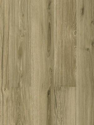 Cortex Designatura Steineiche Klick-Designboden auf HDF-Träger, HCPRO-Öberfläche mit zwei Kork-Dämmschichten, mit Blauer Engel zertifiziert, Planke 1220 x 185 mm, 10,5 mm Stärke, 1,806 m² pro Paket, Nutzschicht 0,55 mm günstig Kork-Bodenbelag kaufen von Bodenbelag-Hersteller Cortex HstNr: BAG8002 *** Mindestbestellmenge 15 m² ***