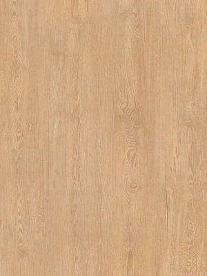 Cortex Vinatura Feldkiefer Design-Parkett mit HDF-Klicksystem und integrierter Trittschalldämmung, Planke 1220 x 185 mm, 10,5 mm Stärke, 1,806 m² pro Paket, Nutzschicht 0,55 mm Preis günstig gesund Design-Parkett von Bodenbelag-Hersteller Cortex HstNr: LJR3004 *** Mindestbestellmenge 15 m² ***