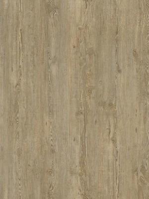 Cortex Vinatura Vinyl Parkett Designboden mit HDF-Klicksystem und integrierter Trittschalldämmung, Kalksteinkiefer Planke 1220 x 185 mm, 10,5 mm Stärke, 1,806 m² pro Paket, Nutzschicht 0,3 mm Preis günstig gesund Design-Parkett von Bodenbelag-Hersteller Cortex HstNr: LJS0004 *** Mindestbestellmenge 15 m² ***