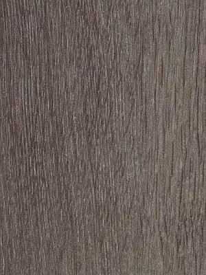 Forbo Allura 0.40 grey collage oak Domestic Designboden Wood zur Verklebung