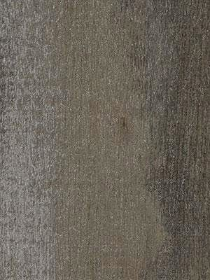 Forbo Allura 0.55 dark grey pine Commercial Designboden Wood zur Verklebung
