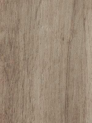 Forbo Allura all-in-one Click-Designboden 0.55 grey autumn oak