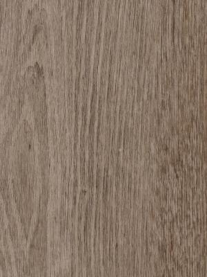 Forbo Enduro 30 Klick-Designboden natural grey oak 4 mm Vinyl-Designboden Klicksystem phthalatfrei  1212 x 185 x 4 mm NS: 0,30 mm NK: 23/31 *** Lieferung ab 10 m² ***