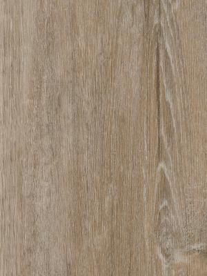 Forbo Enduro 30 Klick-Designboden natural timber 4 mm Vinyl-Designboden Klicksystem phthalatfrei  1212 x 185 x 4 mm NS: 0,30 mm NK: 23/31 *** Lieferung ab 10 m² ***