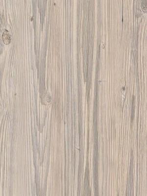 Forbo Impressa natürlicher Designboden zertifiziert mit Blauer Engel Umweltsiegel bleached pine Planke 1000 x 250 mm, 2,5 mm Stärke, 3,0 m² pro Paket, Bodenbelag zur Verklebung oder ohne Klebstoff mit Unterlage Silent-Premium, einfach selbst verlegen, günstig online kaufen von Naturboden-Hersteller Forbo HstNr: fiti9005