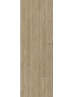 Parador Trendtime 6 Laminat hochwertig mit 4-V-Fuge Eiche Loft grau Planke 2200 x 243 mm, 9 mm Stärke, 2,67 m² pro Paket günstig Laminatboden online kaufen von Laminatboden-Hersteller Parador HstNr: 1730467 *** Lieferung ab 15 m² bzw. 350 EUR Warenwert***