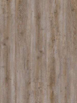 ter Hürne FRIENDS Klebe-Vinyl Pinie Selma 2 mm Landhausdiele Designboden zur Verklebung 1219,2 x 177,8 x 2 mm, NS: 0,3 mm, NK: 23/31 sofort günstig direkt kaufen, HstNr.: 1188210006, *** ACHUNG: Versand ab Mindestbestellmenge: 28 m² ***