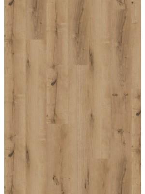 ter Hürne Bright Choice Compact Klick-Vinyl Eiche Bilbao braun 5 mm Landhausdiele Designboden 1510,03 x 222 x 5 mm, NS: 0,55 günstig online kaufen von Design-Belag Hersteller terHürne, HstNr.: 1101190104